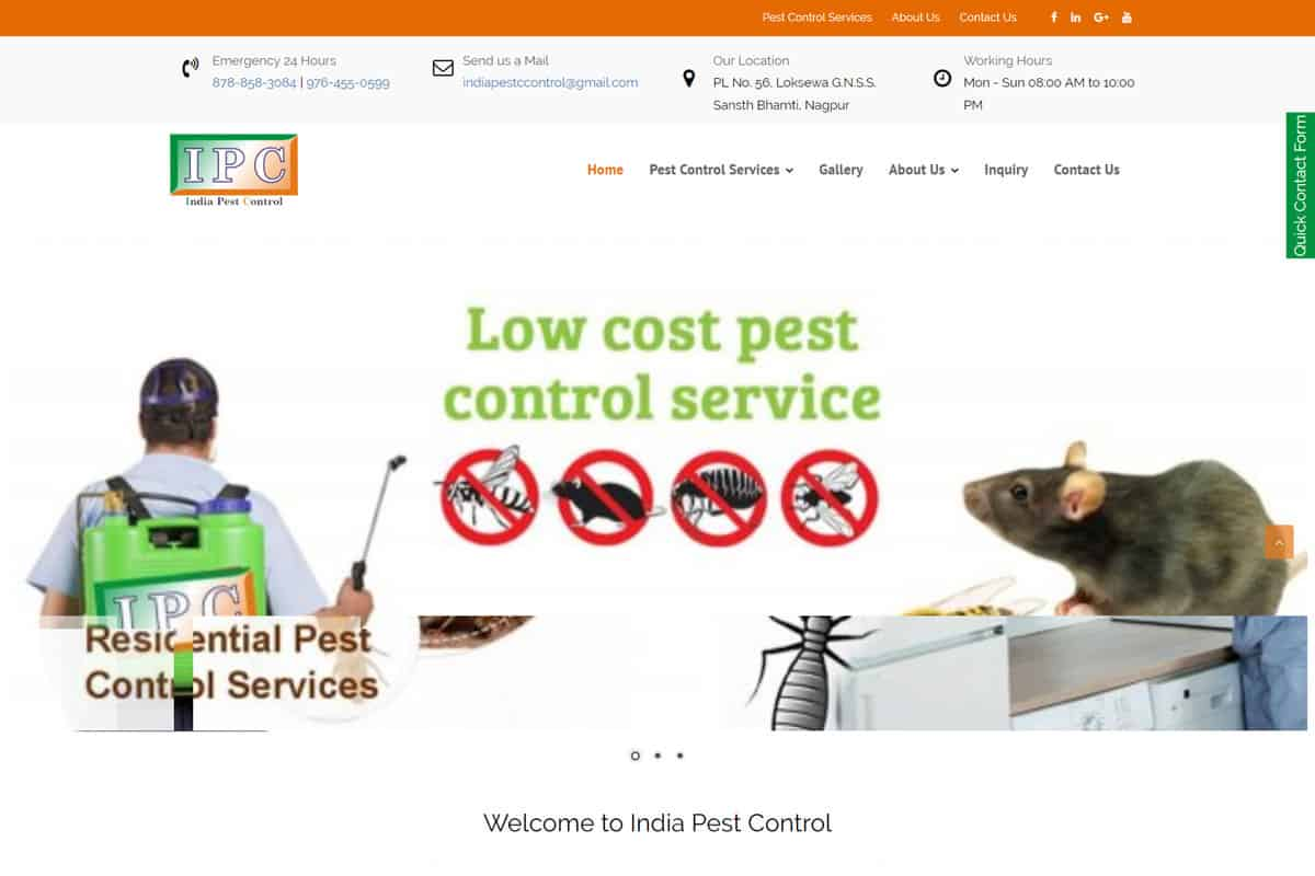 Our Work pest control company website designing